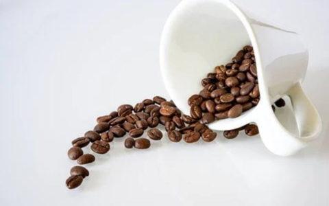 コーヒーカップ1