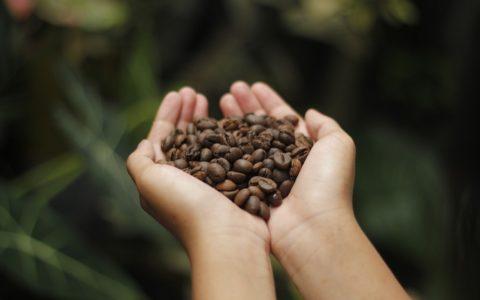 coffee-4591164_960_720[1]